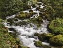Golling Stream, Austria